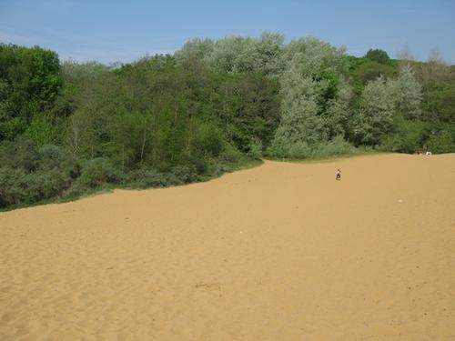 View across the sand dunes at Merthyr Mawr
